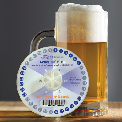 GeneDisc Plate for Beer Spoilage Bacteria
