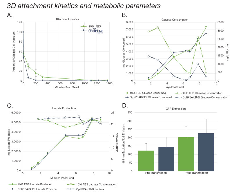 Figure 2 3D sttachment kinetics and metabolic parameters