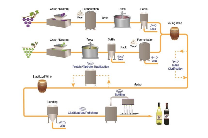 wine-filtration-process-flow-diagram